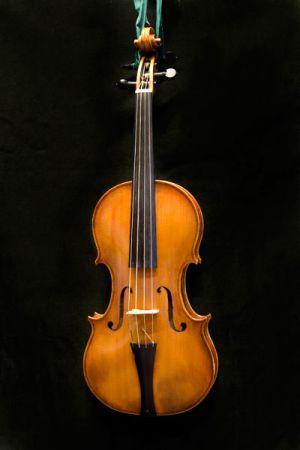 Violin after N. Amati