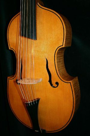 6-string viola d'amore after Georg Aman